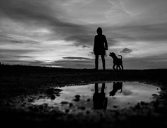 Cooperation (Dan-Schneider) Tags: streetphotography schwarzweiss blackandwhite bw dog light reflection puddle silhouette sunset human fuji x70