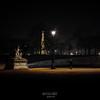 testigos de la noche (gsusce) Tags: gsusce jesúscañas paris eiffel torreeiffel tullerías jardines tuileries gardens tuileriesgardens toureiffel nocturna nocturnal night man street streetphotography