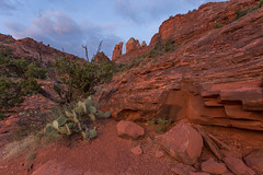 Red Rock Morning (Ken Krach Photography) Tags: sedonaarizona cathedralrock