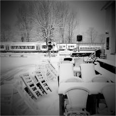 000130 (la_imagen) Tags: sw bw blackandwhite siyahbeyaz  monochrome strasenfotografieistkeinverbrechen lindau lindauimbodensee bodensee laimagen lakeconstanze lagodiconstanza lagodeconstanza winter schnee snow kar kış