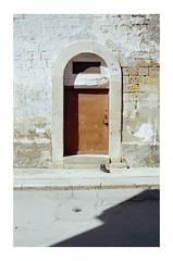 Canosa di Puglia, Italy (pietrowsky) Tags: canosa puglia door porta muro wall pellicola film street urban strada urbano italia italy fujicolor 100 35mm analogico analogue pentax k1000 colors filmisnotdead believeinfilm