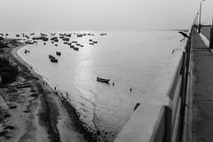 Pamban,Rameswaram. (vjisin) Tags: rameswaram pamban bridge bird indianstreetphotography streetphotography india asia tamilnadu incredibleindia outdoor structure slope humanelement sea blackandwhite monochrome indianbridge boats crow indianocean