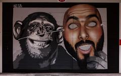 Primer premio de la 4 Galera Urbana del Barrio del Oeste (Salamanca) - Semana 25/52 (OdecamJ) Tags: street streetart west art canon eos 50mm calle gallery arte mask galeria 11 spray neighborhood urbana salamanca 50 barrio careta oeste garaje callejero chimpance 1100d lemarte