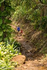 Kauai2015-047.jpg (Michael_Cline) Tags: sophie kauai kalalau napali hanakapiai hanakapiaifalls