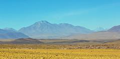 Leaving Laguna Miscanti, Atacama, Chile (Miche & Jon Rousell) Tags: chile blue lake southamerica argentina yellow volcano desert turquoise lagoon atacama andes laguna altiplano sanpedrodeatacama iphone atacamadesert lagunamiscanti iphonography iphone6 lagunamenique
