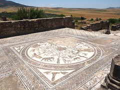 P5261332 (lnewman333) Tags: africa ancient northafrica mosaic historic worldheritagesite morocco fez maroc maghreb fes volubilis romanruins unescosite 1stcenturyad
