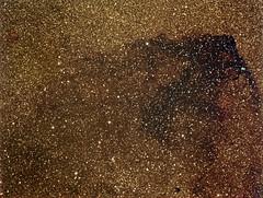 Barnard312 (Francesco Navarra) Tags: astrometrydotnet:status=solved astrometrydotnet:id=nova1164606