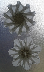 10- and 7-point snowflakes (orig4mi.) Tags: paper origami fold