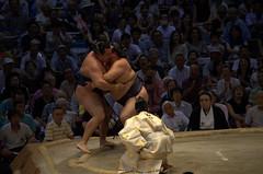 Kisenosato wins vs Kakuryu