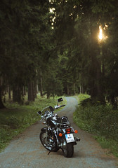 (felix.h) Tags: road trees green nature forest canon way landscape eos vanishingpoint hessen motorbike motorcycle canonefs1855mm taunus hesse 400d canoneos400d digitalrebelxti eoskissdigitalx taunusmountains hondavt750s