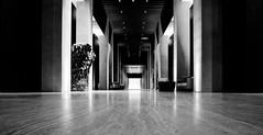 lobby (1) (zzra) Tags: marriott cabo mexico hotel lobby black white bw fine art dark contrast