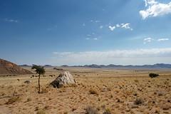 DSC02220 - NAMIBIA 2010 (HerryB) Tags: rundreise namibia afrika südafrika südwest afrique africa 2010 sony tamron alpha bechen heribert fotos photos flickr minolta konica dynax photography herryb heribertbechen reise safari aus garup wildhorses eaglesnest lodge off nowhere einsamkeit weite horizont horizon blick berge steppe dürre trockenheit