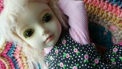 Coco Rosy (pacific_rin) Tags: doll bjd balljointedoll customhouse ai petite gabriel