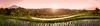 Belimbing, Bali Ricefield (EdBob) Tags: bali rice ricefield ricepaddy riceterrace riceterraces newrice belimbing sunrise dawn indonesia indonesiantravel indonesianarchipelago indonesiantrip indonesian balinese paddy plant plantation flooded irrigation sun terraces terrace terraced southeastasia southeastasiatravel village edmundlowephotography edmundlowe asia asiatravel asian asiantravel agriculture agricultural food allmyphotographsare©copyrightedandallrightsreservednoneofthesephotosmaybereproducedandorusedinanyformofpublicationprintortheinternetwithoutmywrittenpermission