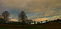 A Christmas Day Walk (Jan 130) Tags: christmasday 25december2016 walkinthepark beautifullight sky suttonpark suttoncoldfield topazglow landscape panorama jan130 ngc npc