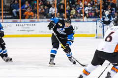 "Missouri Mavericks vs. Wichita Thunder, January 7, 2017, Silverstein Eye Centers Arena, Independence, Missouri.  Photo: John Howe / Howe Creative Photography • <a style=""font-size:0.8em;"" href=""http://www.flickr.com/photos/134016632@N02/31872453600/"" target=""_blank"">View on Flickr</a>"