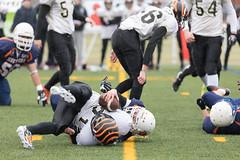 4D3A3053 (marcwalter1501) Tags: minotaure tigres strasbourg footballaméricain football sportdéquipe sport exterieur match nancy