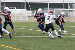 4D3A2984 (marcwalter1501) Tags: minotaure tigres strasbourg footballaméricain football sportdéquipe sport exterieur match nancy