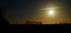 Sunset. (vegetus aer) Tags: woodwaltonfen greatfen greatfenproject wildlifetrust bcnwildlifetrust nnr cambridgeshire wildlife rx10m3 landscape sunset
