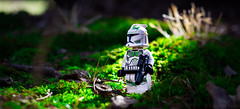 Woodlands Recon (EternalSlothman) Tags: green storm trooper star wars war lego outdoors clone troopers first order blasters afol minifigs minifigures bricks blocks canon toy toys force legos t3i republic