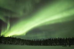 magic (traumlichtfabrik) Tags: auroraborealis northernlights muonio finland lappland winter night nighttime green light snow outdoors cold traumlichtfabrik finnland aurora outdoor