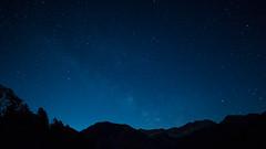 Am Plansee, Tirol - Tyrol-5196 (Holger Losekann) Tags: breitenwang tirol österreich at