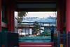 20170115-_DQH0020.jpg (ykgraph) Tags: sdquattroh sigma 50mmf14 foveon 東京 日本 tokyo japan sdquattro art