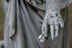Project365 Day 21. Delicate Hands (MikeDPhotographs) Tags: cemetery gravestone statue moss delicate hands project365 weathered