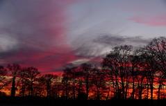 Sunset and silhouettes (joeke pieters) Tags: 1320771 panasonicdmcfz150 zonsondergang sunset silhouettes