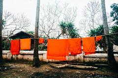 Laundry (yemaria) Tags: buddhism indochina monk laos luangprabang watxiengthong laundry nikkor raw nikond800e yemaria