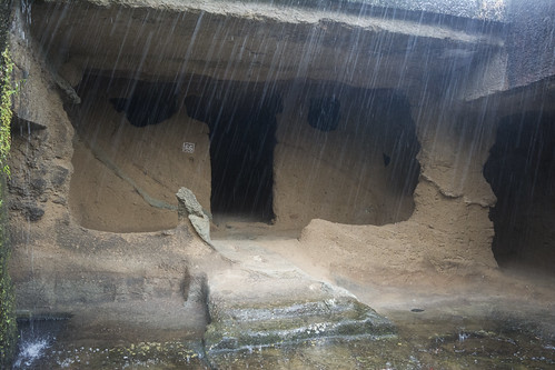 Kanheri caves in the Sanjay Gandhi National Park