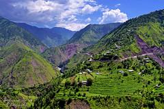 Kaghan Valley (Shehzaad Maroof Khan) Tags: pakistan summer mountains green clouds composition nikon valley fields kaghan shogran naran paye mansehra kunhar kpk sripaye