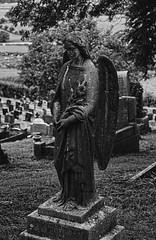 Blidworth Church Graveyard Angel (Benedictine1) Tags: bw sculpture cemetery memorial cross aap sacredspace year2015