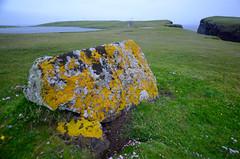 Shetland (osloann) Tags: stone moss colours shetland mose farger 2015