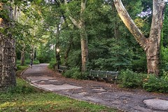 Central Park wonders 2 (Rafa Matos) Tags: park city trip travel summer lake newyork green nature town path centralpark manhattan novaiorque