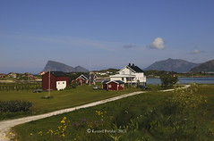 Sommaroy_July_2015_V (LyonelPerabo) Tags: flowers blue houses red sea summer sky cloud white house mountain mountains flower building nature water norway clouds landscape island islands coast norge day cloudy outdoor hill north hills arctic coastal nordic polar tromso troms troms haja hja kvalya northnorway hillesy kvaloya kvaly hillesoy hillesya kvaloy hillesoya