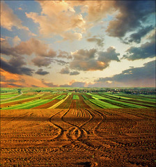 Force of Earth (Katarina 2353) Tags: sunset field landscape spring europe serbia vojvodina srbija beska serbiainspired