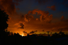 Australia (Images by Jeff - from the sea) Tags: nikon d7200 dusk twilight palmtrees sky tamronsp2470mmf28divcusd sunset clouds storm 500v20f topf50 1500v60f