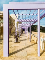 Vanishing Point at The Getty Center ((Jessica)) Tags: bright museum outdoor gettycenter buildings california getty losangeles architecture la vanishingpoint lavender purple