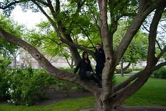 Copenhagen (theuser) Tags: copenhagen denmark europe park nature outdoors treeclimbing vacation