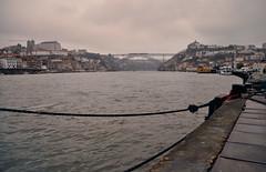 Porto - Vista dal porto (Celeste Messina) Tags: porto portogallo portugal rainyday cloudyday rain clouds foschia douro fiume river pontedomluisi pov prospettiva perspective fune cavo atmosfera atmosphere