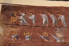Codex_24