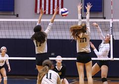 IMG_8123 (SJH Foto) Tags: girls volleyball high school york delone catholic team teen teenager net battle spike block action shot jump midair