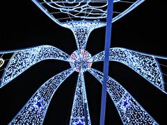 CampanaArriba_DSCN3890 (darioalvarez) Tags: luces festivas iluminación lucesnavideñas plazamayor zamora castillayleón españa spain viajes invierno cultura 31dediciembre2015