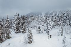 white world (Thunderbolt_TW) Tags: japan canon hy bai landscape snow winter mountain alps 日本 風景 攝影 雪景 冬天 高山 五箇山 北陸 阿爾卑斯山 高山市 新穗高