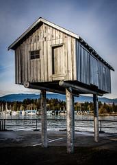 LightShed (Katrina Wright) Tags: dsc0087 house cabin houseonstilts sculpture vancouver lightshed coalharbour
