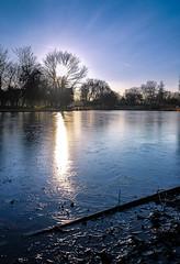 Victoria Park (cristianachivarria) Tags: victoriapark paris london royalparks projectweather sky tree reflection lake frozen frozenlake waterscape nature