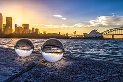 Hubble double bubble trouble (Rakuli) Tags: ifttt 500px sunset golden orange sydney icons scenic seagull water glass globes lensing clouds twilight rocks ocean harbour