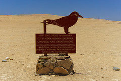 Rezerwat Narodowy Paracas | Paracas National Reserve