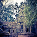 2015-05-21 Cambodia Day 2, Tha Prohm Temple, Siem Reap